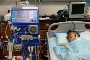 挂心7岁女孩患缓慢肾衰竭靠透析保持生命家里还有双胞胎妹妹