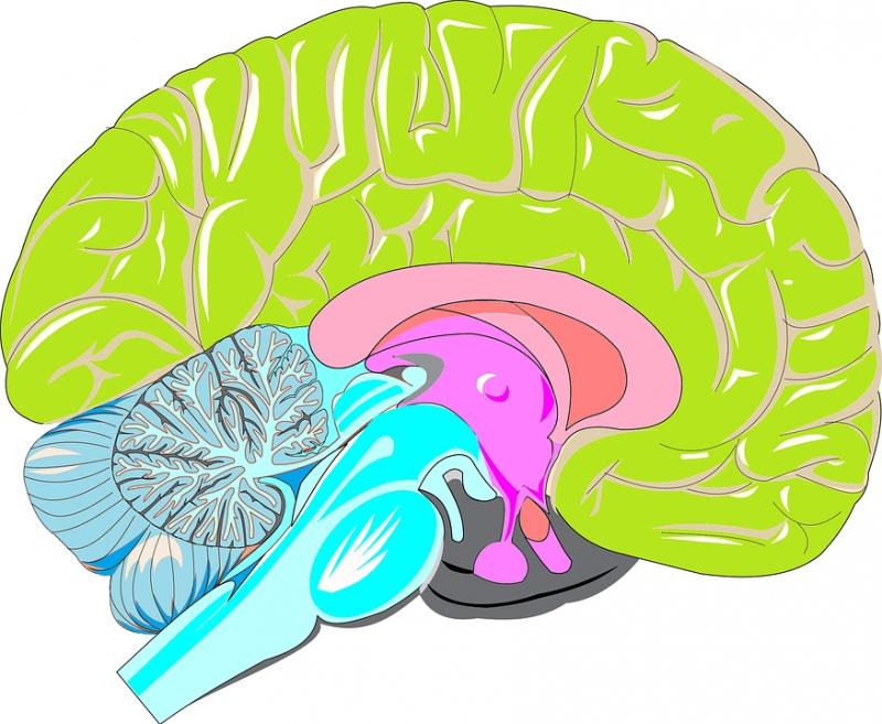 脑外伤三级有哪些后遗症脑外伤如何护理
