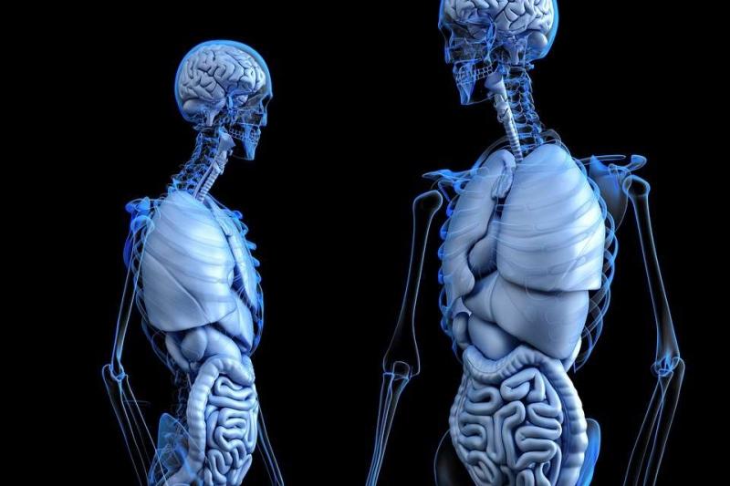 胸部不舒服有哪些症状胸部不舒服都有哪些因素导致的呢